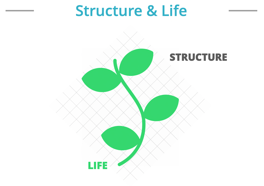 People Plan - Structure and Life
