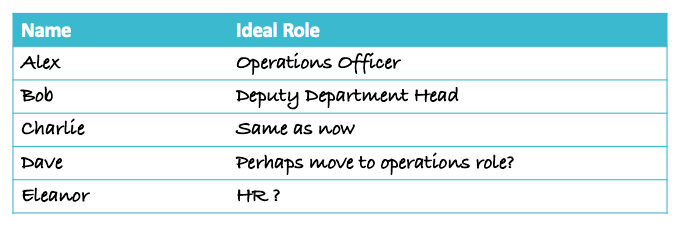 People Plan - Team Development Ideal Role