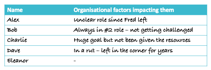 People Plan - Team Development Organisational Factors